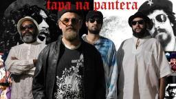 """Tributo a Raul Seixas abre """"lives"""" com artistas de Araraquara"""