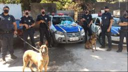 Cães ajudam GCM a encontrar cocaína e maconha em terreno
