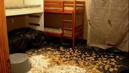 Polícia Civil apreende 30 kg de droga em casa na zona Norte