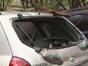 Uma Tucson Hyundai de Marco Antonio dos Santos foi atingida por uma árvore que despencou após uma tempestade - Foto: Reprodução EPTV