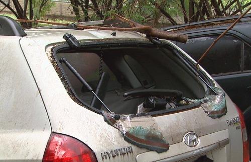 Reprodução EPTV - Uma Tucson Hyundai de Marco Antonio dos Santos foi atingida por uma árvore que despencou após uma tempestade