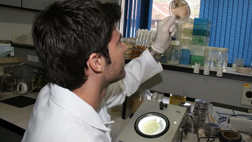 O evento Pesquisa na USP  Destaques Recentes apresenta estudos por área do conhecimento - Foto: USP Imagens